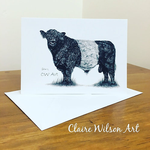 'BELTED GALLOWAY' BLANK GREETINGS CARDS