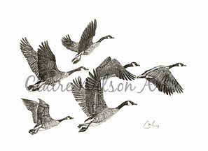 Claire Wilson Art 'Fly Away Home'