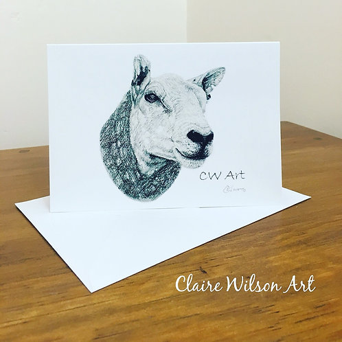 'NORTHERN STAR' BLANK GREETINGS CARDS