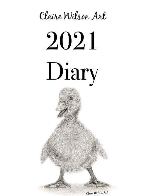 'PUDDLES' 2021 DIARY