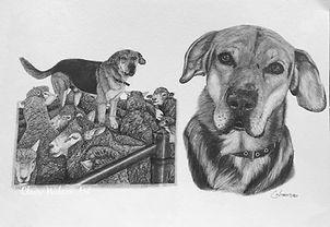 Claire Wilson Art 'Commission - Ralph'