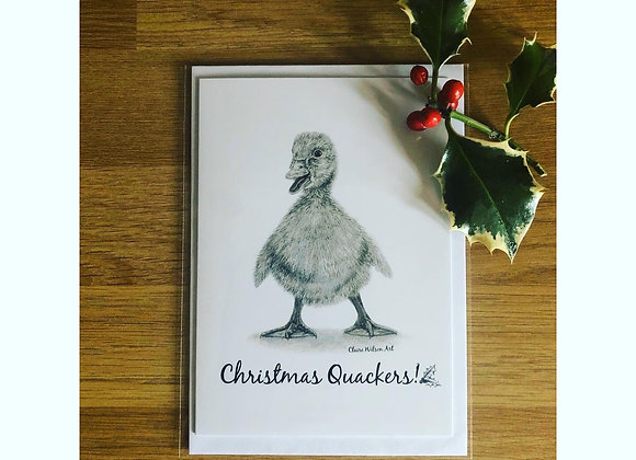 'CHRISTMAS QUACKERS' BLANK CHRISTMAS CARDS