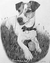 Claire Wilson Art 'Commission - Barney'