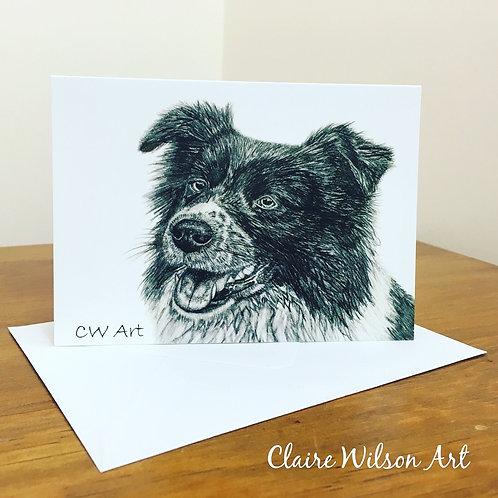 'COLLIE' BLANK GREETINGS CARDS