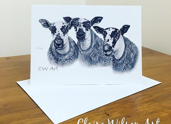 'MARR MULES' BLANK GREETINGS CARDS
