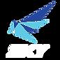 SKY logo (white).png