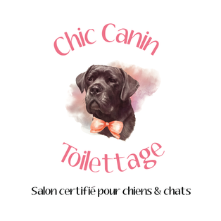 Toilettage Chic Canin