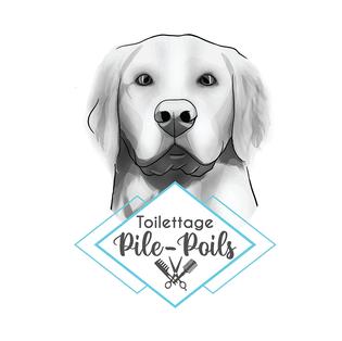 Toilettage Pile-Poils