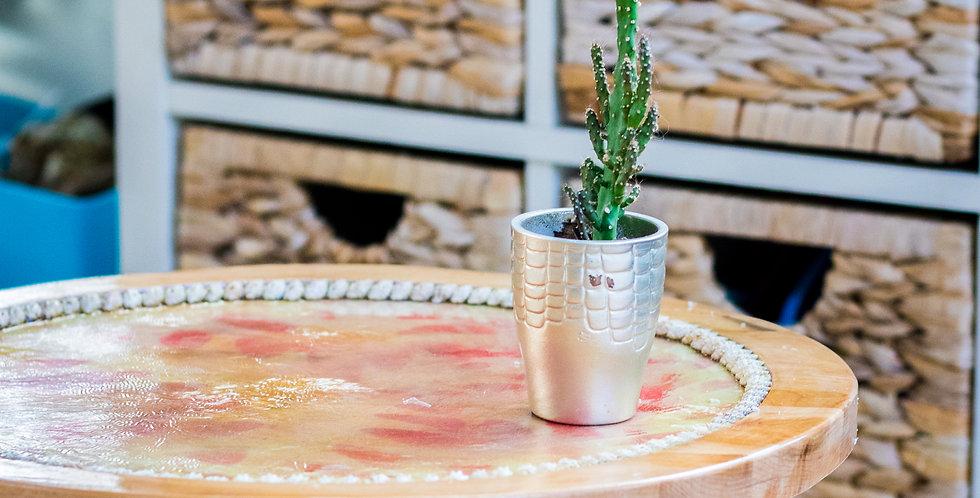 Table de jardin Coquilles