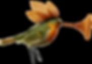 OiseauTrompette_Compressé.png