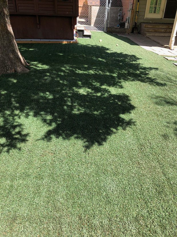 Recycled Synthetic Turf