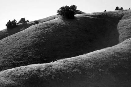 Hillside Group