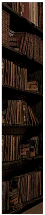 shelves%252520(1)_edited_edited_edited.p