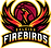 Raleigh-Firebirds-Primary-Logo.png