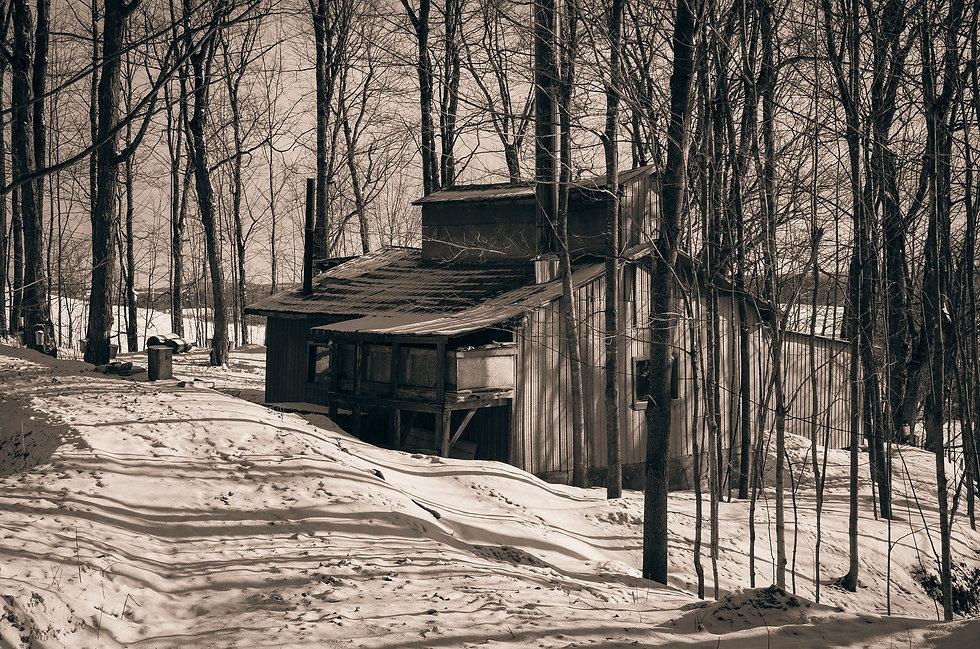 cabin-1866818_1920.jpg