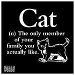 uw cats sentiment-14.jpg