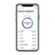 Xpence UI Neobank Mobile UX Expense Categorisation