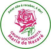 Logo-GSNM-2021.jpg
