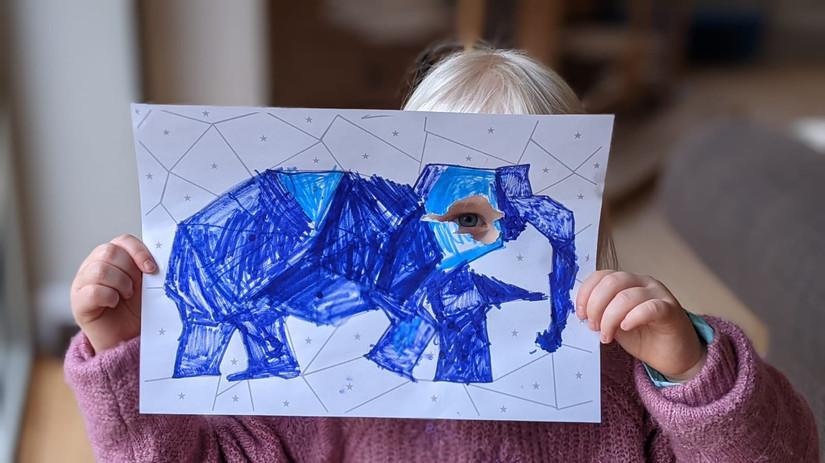 Elephant's eye.JPG