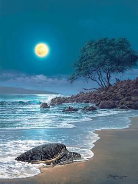 Honu by the Beach