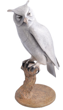 Horned Owl on Branch
