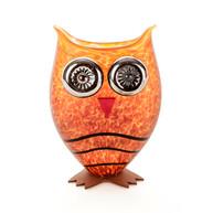 Owl I Amber