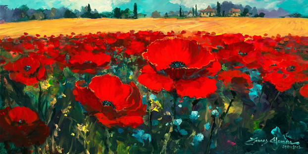 Poppies in the Summer Breeze