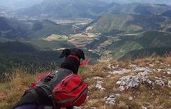 Cani-randonnée de l'aventure blanche - le vercors en traineau