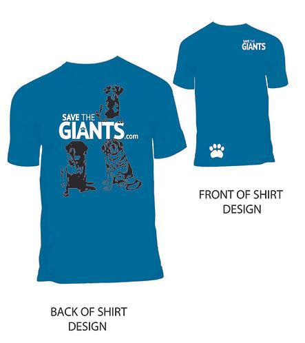 Softstyle Unisex T-Shirt (Grey or Blue)