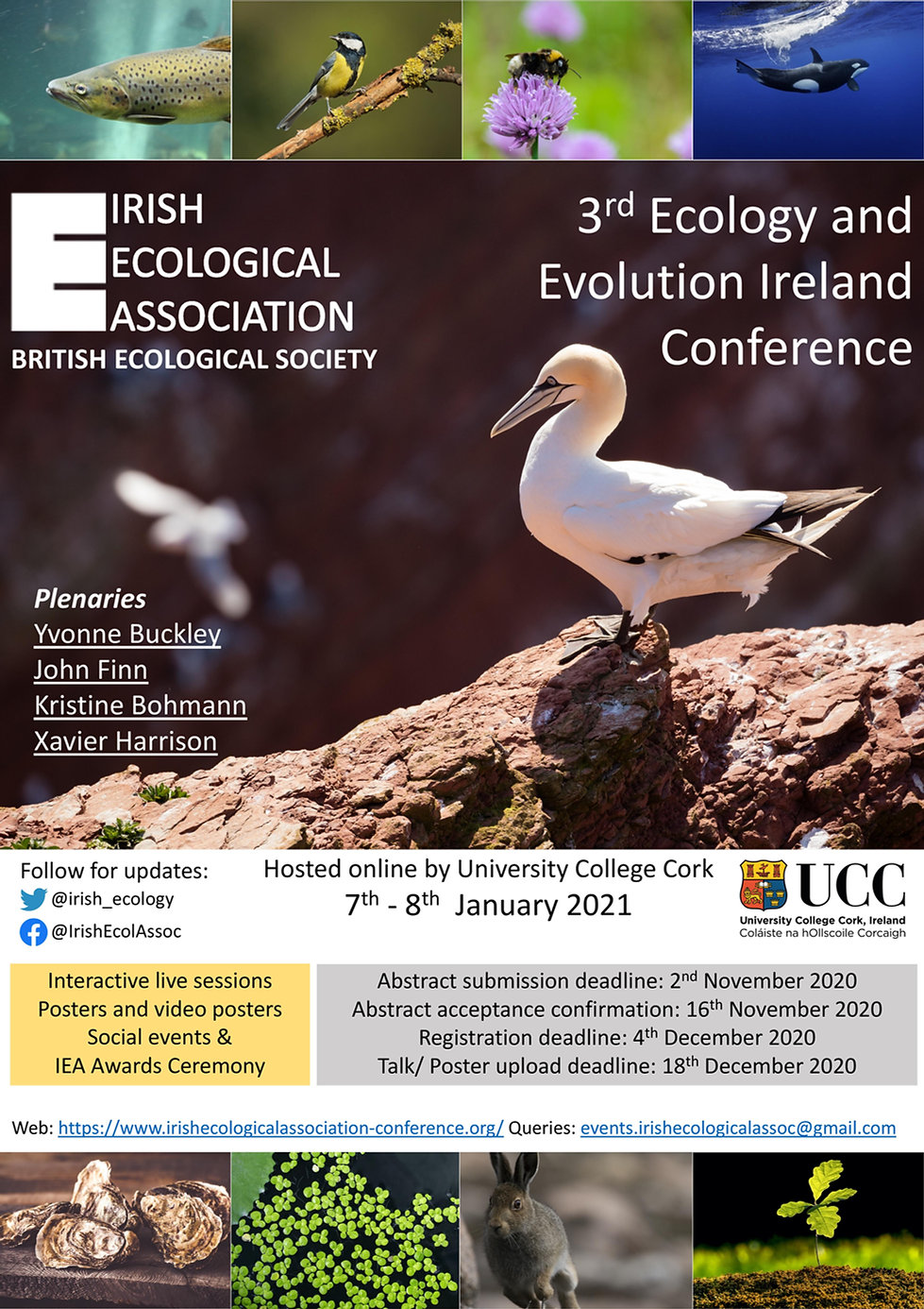 Irish Ecological Association 3rd Ecology and Evolution Ireland Conference, Plenaries: Yvonne Buckley, John Finn, Kristine Bohmann, Xavier Harrison. Hosted online by University College Cork. Registration deadline: 4th December 2020. Links to Twitter, Facebook, and email. These links are also available in our menu