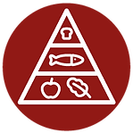 Nutricao-Saude_icon_Nutricao-Clinica.png