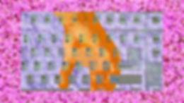 hand colour 2.00_00_36_21.Still001.jpg