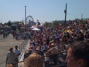 picture of Crab Derby spectators in bleechers.