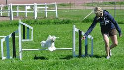 kenny hoppar
