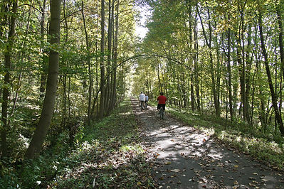 Oil Creek Trail.jpg