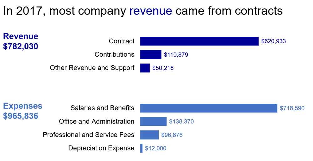Bar chart depicting a nonprofit organization's revenue and expenses for 2017.