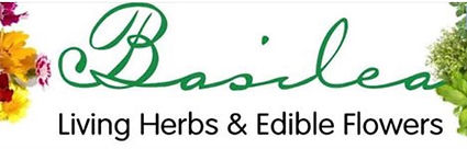 Basilea Living Herbs & Edible Flowers logo