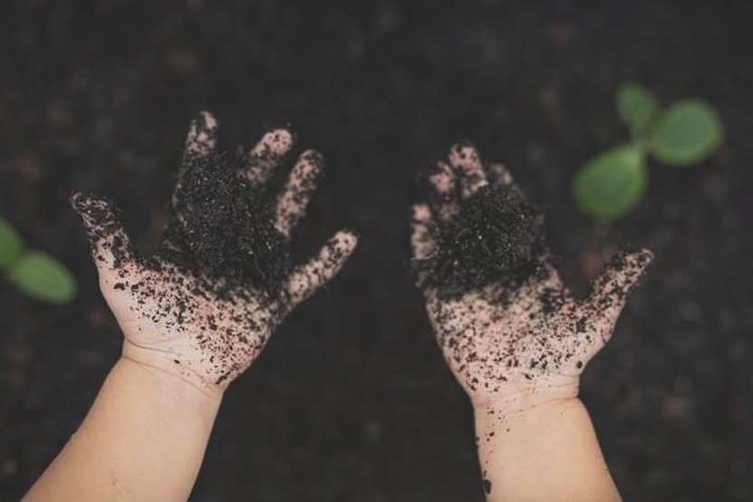 soil%252520on%252520sundays%2525202_edit