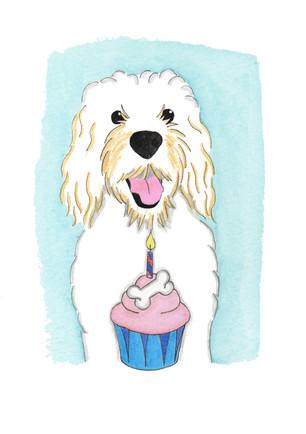 Happy Birthday Doug!
