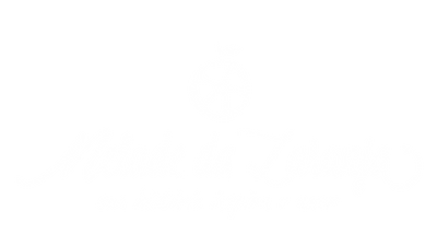 MDL_Institucional_logos-01 Marca D'agua.