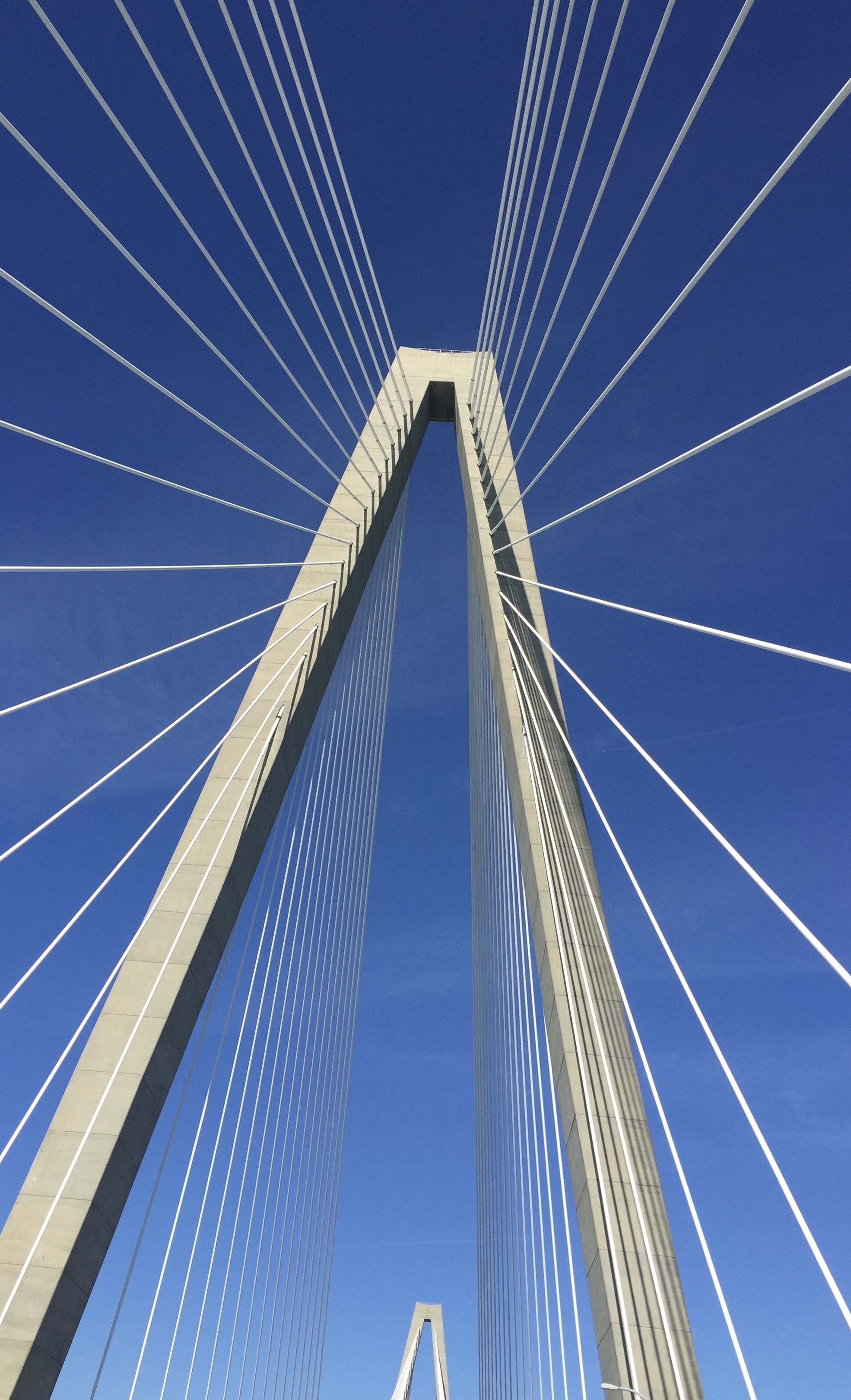 Ravenel from below
