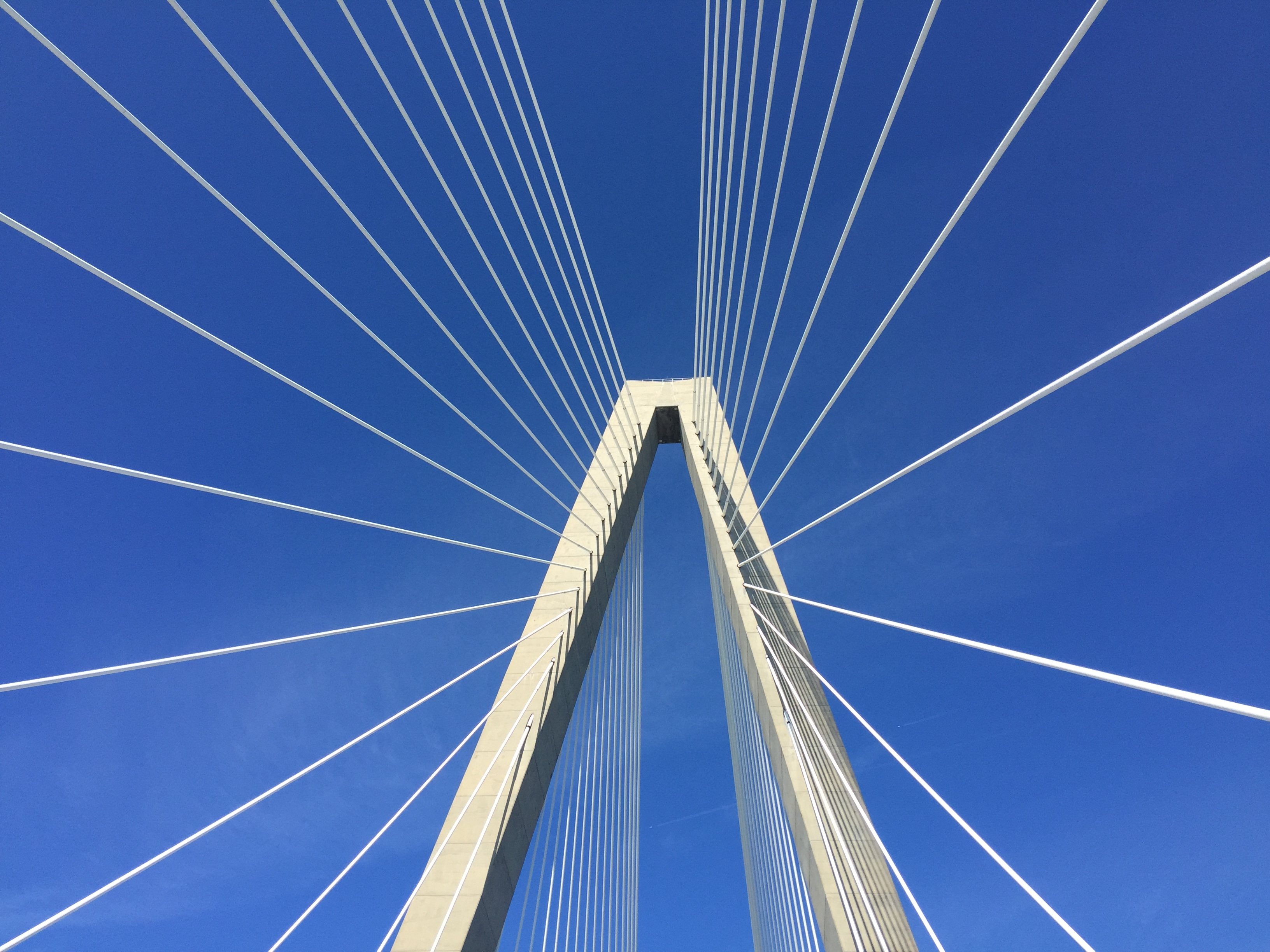 Ravenel looking up