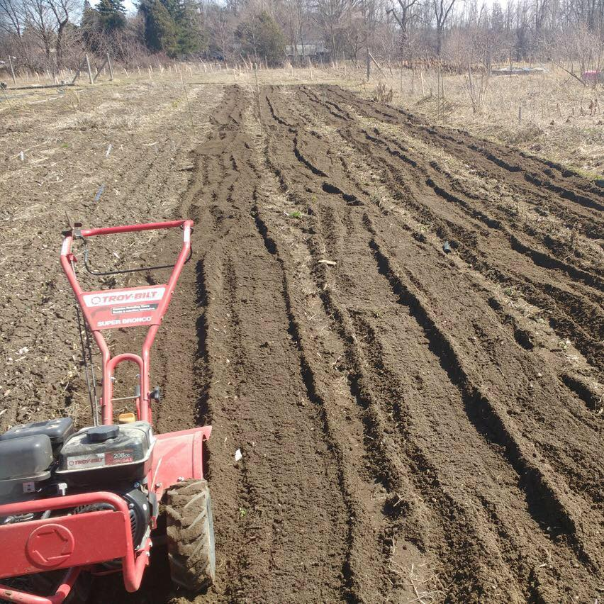 Freshly Tilled Beds