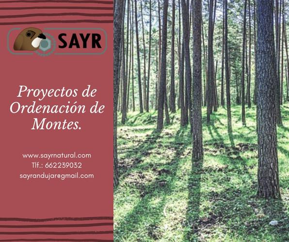 Proyectos_de_Ordenación.jpg