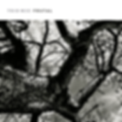 Trío-MJC---Frutal---2018---Acqua-Records