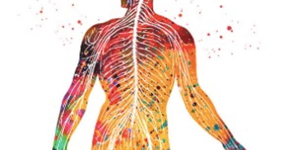 Rewire Your Nervous System