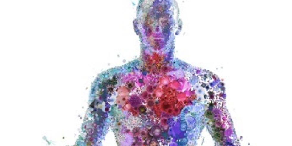 Rewire Your Nervous System Lvl 2