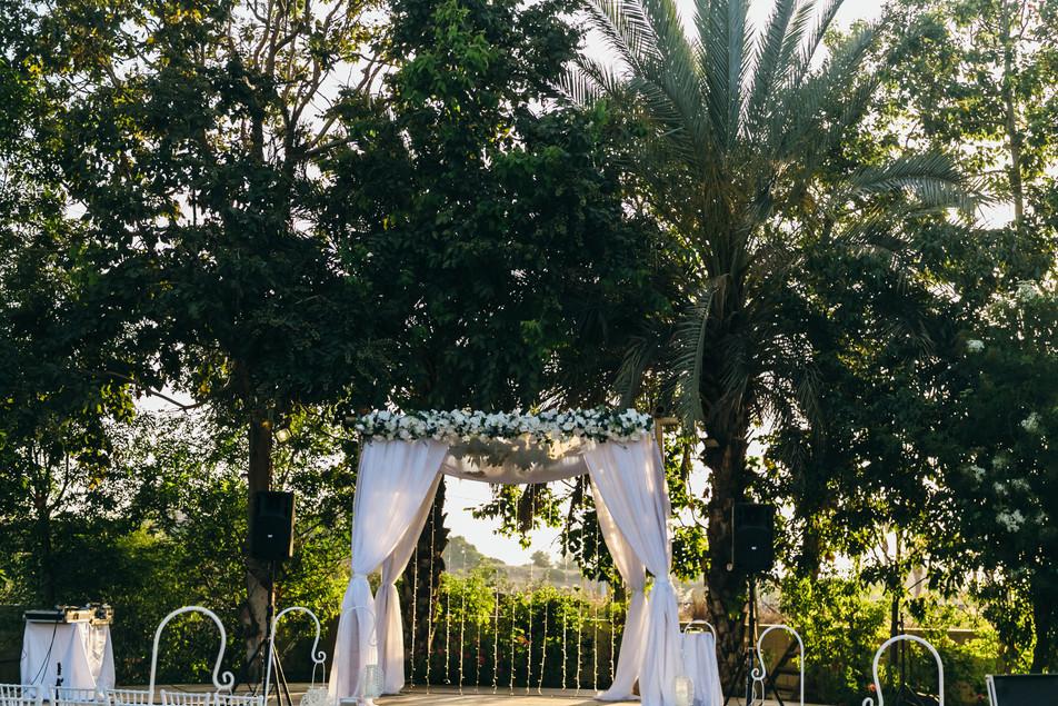 WOW wedding photography
