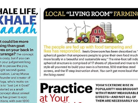 Yoga in the News!