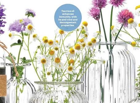 No Scents Nonsense: Aromatherapy for Immunity